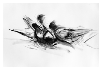 Megan Wolfe Art-Abstract Pigeons 1